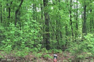 Locust Grove Drive, Locust Grove, VA 22508 (#OR9644033) :: LoCoMusings