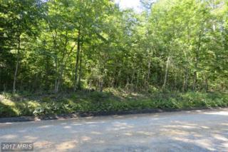 Old Office Road, Rhoadesville, VA 22542 (#OR9740323) :: LoCoMusings