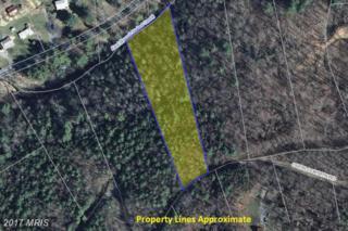 0 Overlook Mountain Road, Elkton, VA 22827 (#PA9572102) :: LoCoMusings