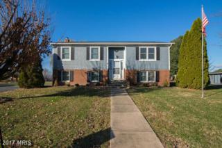 4 Fox Lane, Luray, VA 22835 (#PA9822422) :: LoCoMusings