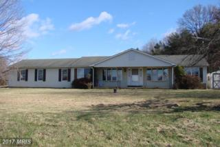 1018 Harper Valley Road, Luray, VA 22835 (#PA9825274) :: Pearson Smith Realty