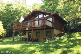 4451 Grove Hill River Road, Stanley, VA 22851 (#PA9960128) :: Pearson Smith Realty