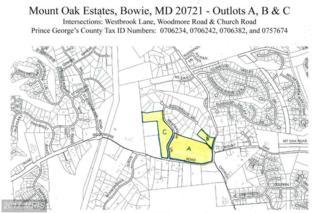 Westbrook Lane, Bowie, MD 20721 (#PG8188499) :: LoCoMusings