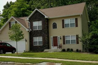 14920 Schall Road, Accokeek, MD 20607 (#PG9689353) :: Pearson Smith Realty