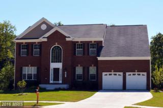 12213 Wallace Landing Court, Upper Marlboro, MD 20772 (#PG9736326) :: Pearson Smith Realty