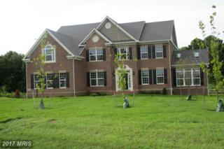 16812 Sleepy Spring Court, Bowie, MD 20716 (#PG9776809) :: Pearson Smith Realty