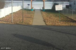 Elm Trail, Aquasco, MD 20608 (#PG9809313) :: Pearson Smith Realty