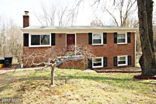 17207 Usher Place, Upper Marlboro, MD 20772 (#PG9896006) :: Pearson Smith Realty