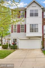 13723 Maned Goose Lane, Upper Marlboro, MD 20774 (#PG9919962) :: LoCoMusings