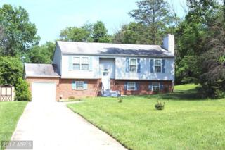 4704 Hidden Pine Lane, Temple Hills, MD 20748 (#PG9939883) :: Pearson Smith Realty