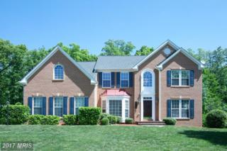 9305 Stoney Harbor Drive, Fort Washington, MD 20744 (#PG9951811) :: Pearson Smith Realty