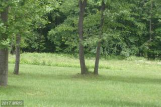 Lot 1 Holleran Estates, Kingwood, WV 26537 (#PR9558592) :: Pearson Smith Realty