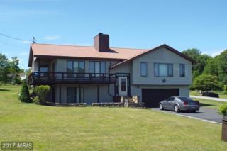 59 Bobolink Drive, Terra Alta, WV 26764 (#PR9686362) :: Pearson Smith Realty