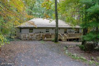 446 Rhododendron Drive, Terra Alta, WV 26764 (#PR9943256) :: Pearson Smith Realty