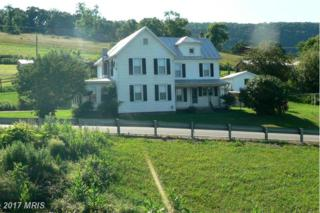 16 Hillside Drive, Upper Tract, WV 26866 (#PT9692506) :: Pearson Smith Realty