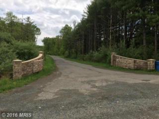 16625 Dominion Reserve Court, Broad Run, VA 20137 (#PW9647669) :: Pearson Smith Realty
