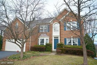 14468 Clubhouse Road, Gainesville, VA 20155 (#PW9846068) :: Pearson Smith Realty
