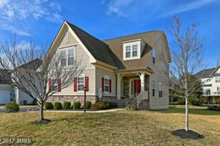 9048 Raging Water Drive, Bristow, VA 20136 (#PW9865092) :: Pearson Smith Realty