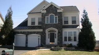 3391 Oakham Mount Drive, Triangle, VA 22172 (#PW9888874) :: LoCoMusings