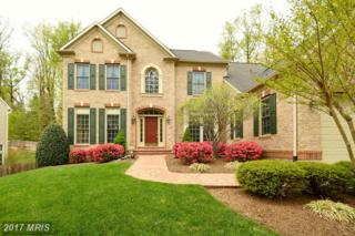16476 Hayes Lane, Woodbridge, VA 22191 (#PW9913929) :: Pearson Smith Realty
