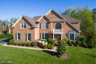 15746 Ryder Cup Drive, Haymarket, VA 20169 (#PW9915459) :: Pearson Smith Realty