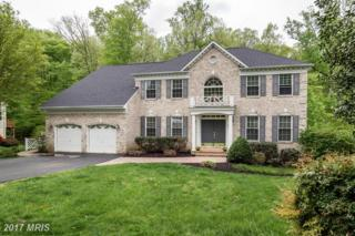 12038 Bridle Post Place, Manassas, VA 20112 (#PW9917967) :: Pearson Smith Realty
