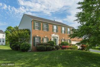 10617 Wulford Court, Gainesville, VA 20155 (#PW9932207) :: Pearson Smith Realty