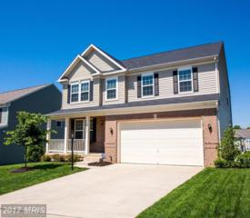 15222 Jennerette Lane, Woodbridge, VA 22193 (#PW9951821) :: LoCoMusings