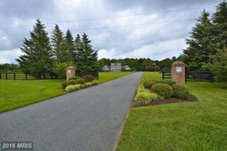 516 Goose Landing Farm Lane, Millington, MD 21651 (#QA9685594) :: Pearson Smith Realty