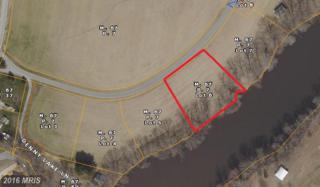 124 Bullet Run Lane, Wye Mills, MD 21679 (#QA9696912) :: Pearson Smith Realty