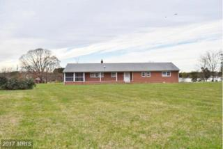 124 Greenwood Creek Road, Queenstown, MD 21658 (#QA9823704) :: Pearson Smith Realty