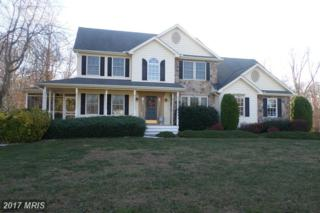 375 Claiborne Fields Drive, Centreville, MD 21617 (#QA9824148) :: Pearson Smith Realty
