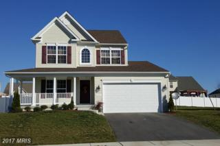 106 Fair Brook Way, Centreville, MD 21617 (#QA9828736) :: Pearson Smith Realty