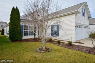 815 Harmony Way, Centreville, MD 21617 (#QA9837302) :: Pearson Smith Realty