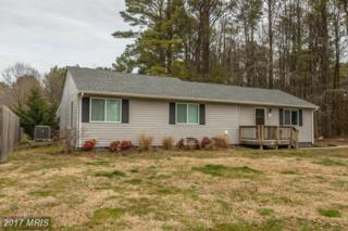121 Talbot Road E, Stevensville, MD 21666 (#QA9858082) :: Pearson Smith Realty