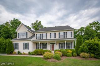 168 Goldfinch Lane, Centreville, MD 21617 (#QA9890610) :: Pearson Smith Realty