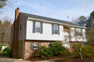 211 Pennick Drive, Stevensville, MD 21666 (#QA9895666) :: Pearson Smith Realty