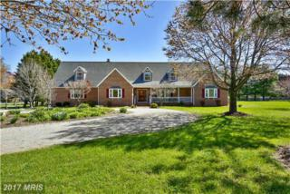 305 Wye Harbor Drive, Queenstown, MD 21658 (#QA9905854) :: Pearson Smith Realty