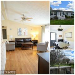 3635 Peters Corner Road, Marydel, MD 21649 (#QA9907359) :: Pearson Smith Realty