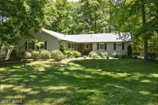 12 Greenwood Shoals Shoals, Grasonville, MD 21638 (#QA9913694) :: Pearson Smith Realty