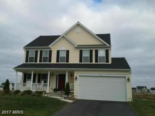 122 East Brook Drive, Centreville, MD 21617 (#QA9931729) :: Pearson Smith Realty