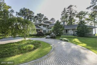 201 Lighthouse View Drive, Stevensville, MD 21666 (#QA9931993) :: Pearson Smith Realty