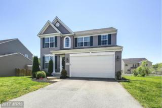 164 E Meadow Drive, Centreville, MD 21617 (#QA9934181) :: Pearson Smith Realty