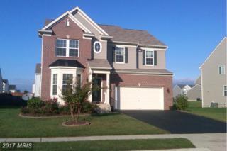 119 E Meadow Drive E, Centreville, MD 21617 (#QA9940402) :: Pearson Smith Realty