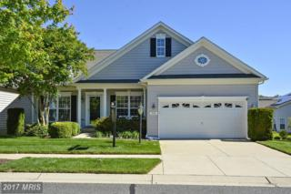 306 Opera Court, Centreville, MD 21617 (#QA9945230) :: Pearson Smith Realty