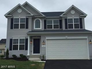 143 East Brook Drive, Centreville, MD 21617 (#QA9953783) :: Pearson Smith Realty