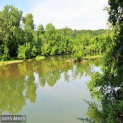 Hickory Lane, Woodstock, VA 22664 (#SH8727923) :: Pearson Smith Realty