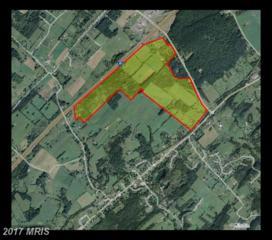 725 Mount Olive Road, Toms Brook, VA 22660 (#SH9519382) :: LoCoMusings