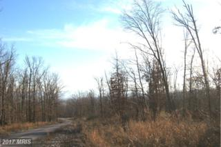 Hunter Road, Woodstock, VA 22664 (#SH9549269) :: LoCoMusings