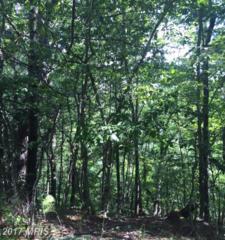 0 Ironwood, Mount Jackson, VA 22842 (#SH9702976) :: LoCoMusings